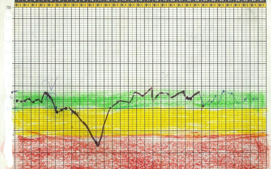 ¿Cómo interpretar el resultado del medidor de peak flow?